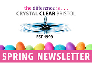 Crystal Clear Spring Newsletter Logo and pink banner