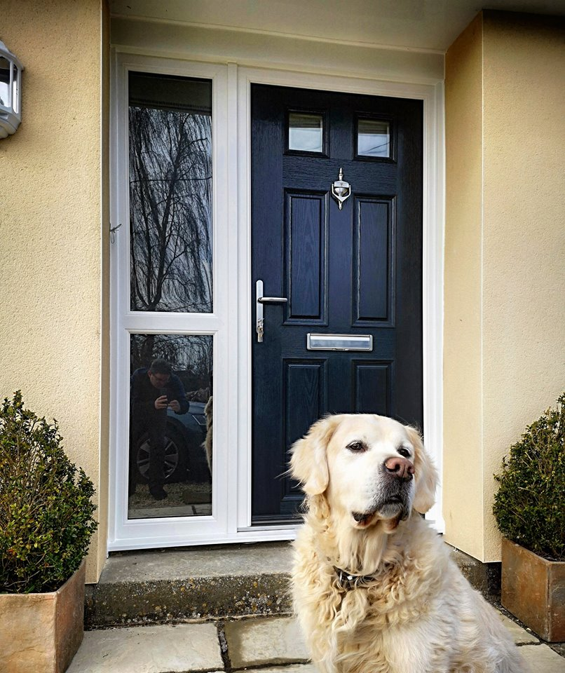 One happy dog, one gorgeous composite front door